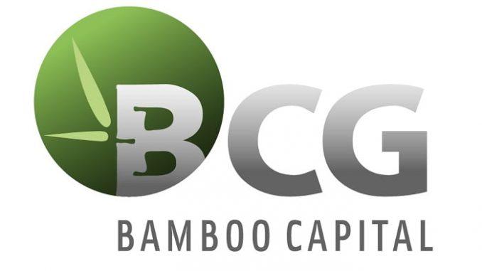Bamboo Capital (BCG) tăng vốn lên 5.000 tỷ, với mục tiêu lợi nhuận lên 800 tỷ